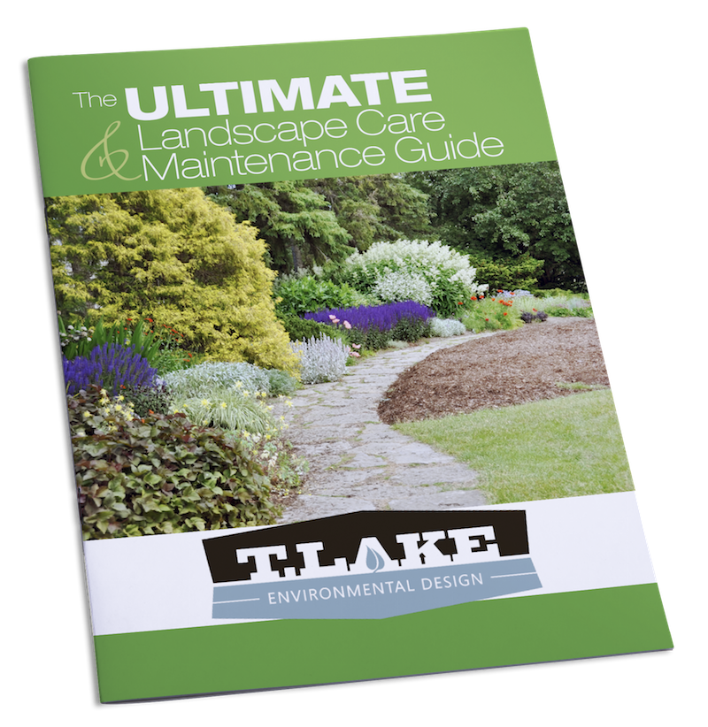 T. Lake Environmental Design's Landscape Maintenance Guide