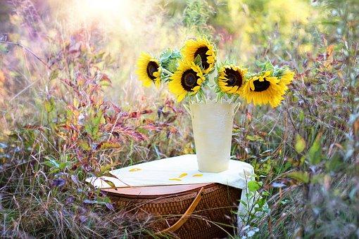 sunflowers-1719119__340
